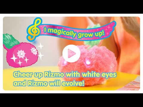 Kid Rizmo Evolves